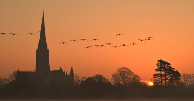 Salisbury Cathedral at dawn (C) S. Walsh