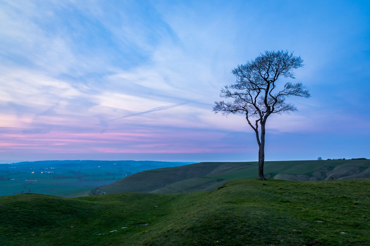 Roundway Hill in Wiltshire