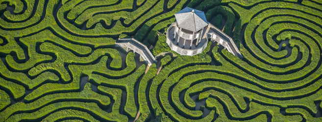 Hedge_maze_at_longleat