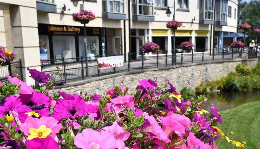 Flowers in the town centre - copyright Paul Stallard