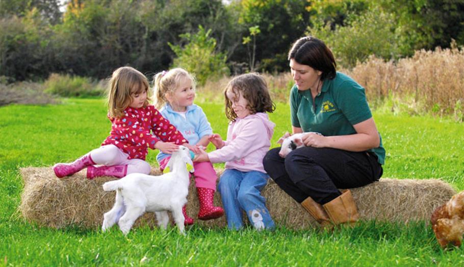 Zoos & Animal Attractions in Wiltshire - VisitWiltshire co uk