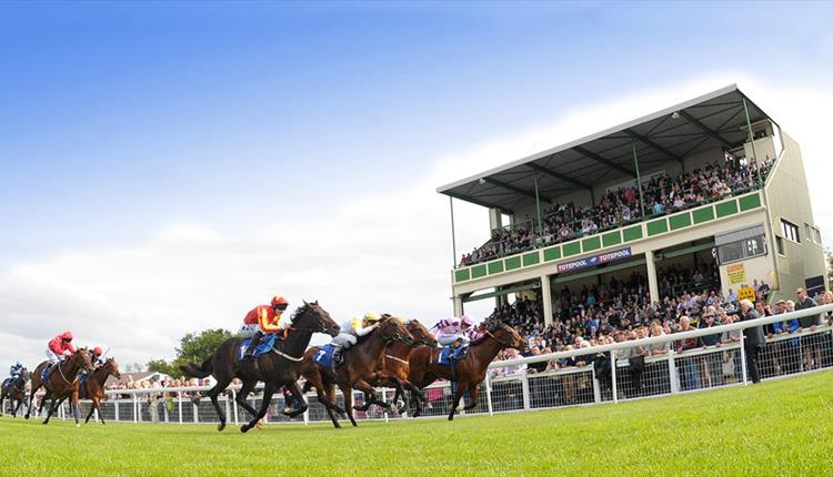Image result for salisbury races