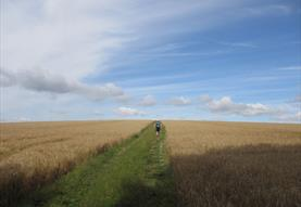 Walking Holidays in Wiltshire
