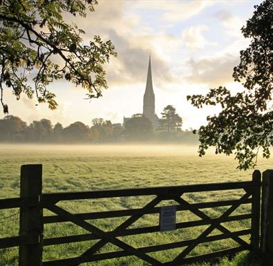 Salisbury Cathedral across the meadows (C) Ash Mills