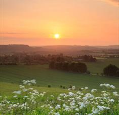 What's Hot in Wiltshire This Summer