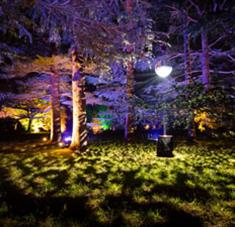 An Enchanted Christmas Trail at Westonbirt Arboretum
