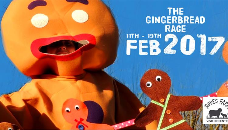 The Gingerbread Race