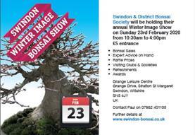 Swindon 'Winter Image' Bonsai Show 2020