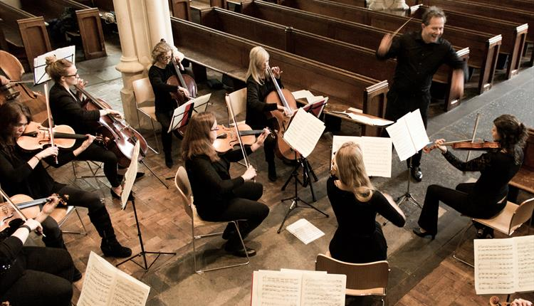 Westminster Chamber Orchestra - An English Idyll