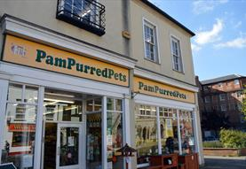 Pampurred Pets