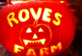 Pumpkin Carving at Roves Farm