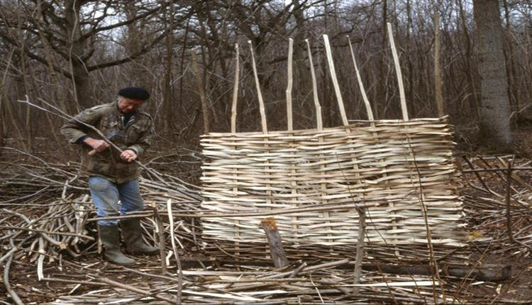 Hazel Hurdles Workshop